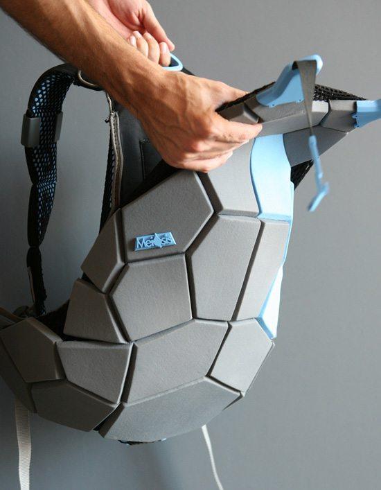 Meiosis-Backpack-2a