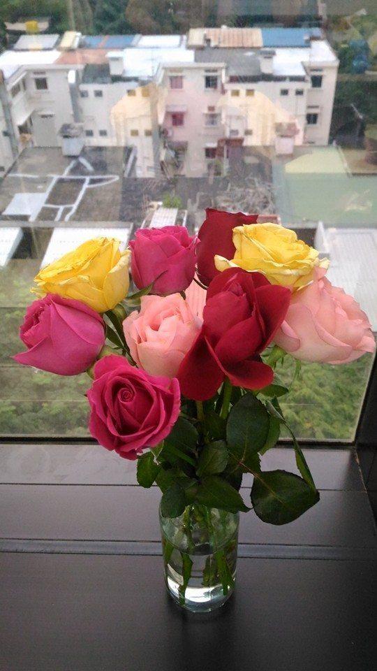 asus zenphone selfie roses asus selfiephone