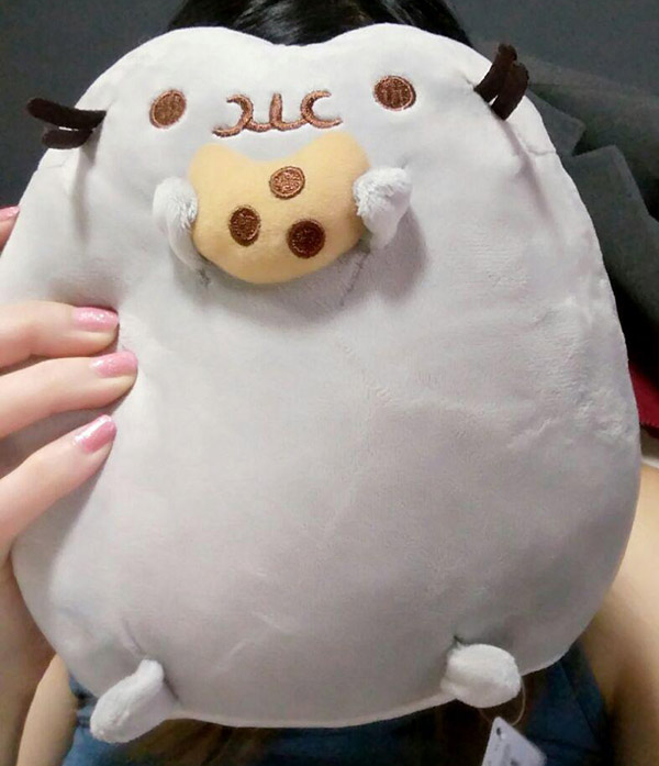 If you turn the phone upside down, it looks like Pusheen's diet is working.