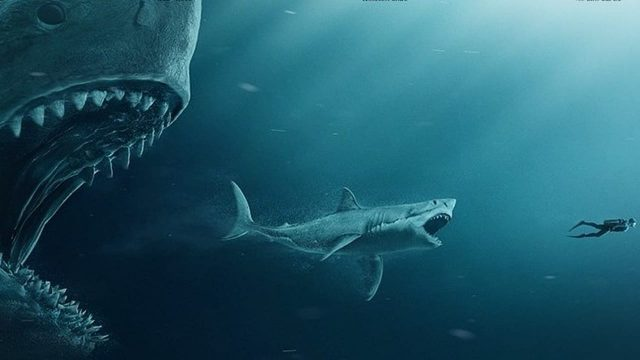Rainn Wilson Talks Megalodons, Being Out At Sea, And Acting