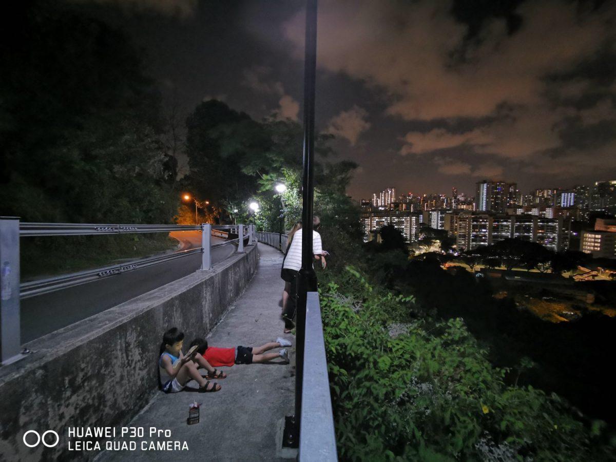 Geek Review: The Huawei P30 Pro's Camera | Geek Culture