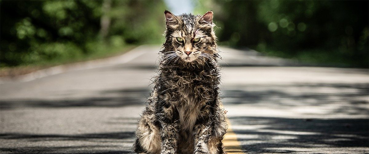 Geek Review: Pet Sematary | Geek Culture