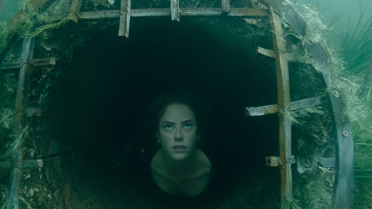 crawl-movie-review-3